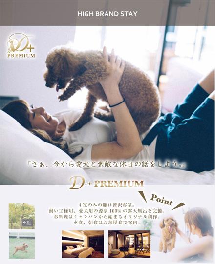4室のみの離れ贅沢客室D+PREMIUM