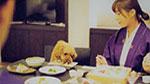 特典1 Sサイズの愛犬用会席(朝・夕)